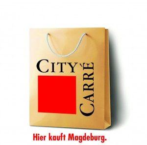 CIC-Logo-300x295