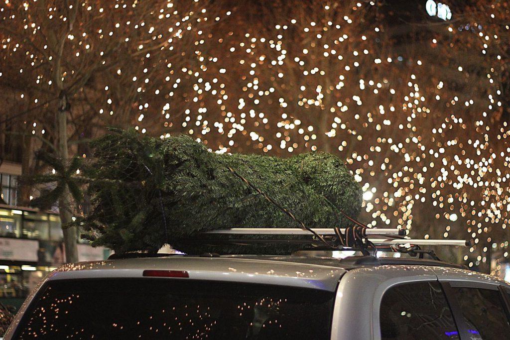weihnachtsbaum-auf-auto