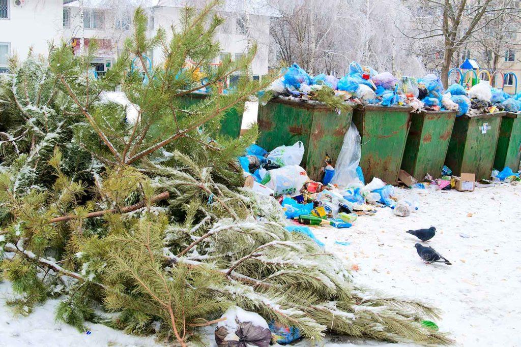 Weihnachtsbaum entsorgt neben Hausmüll